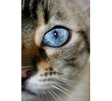 pretty blue Photographic Print