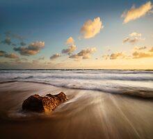 Crocodile Rock by Luka Skracic