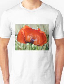 Poppy Profile T-Shirt