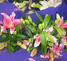 Pink Lillium on a purple background. by Marilyn Baldey