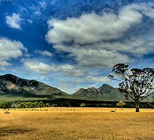 Thats Some View - Victoria Valley - Grampians National Park - The HDR Experience by Philip Johnson