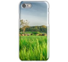 Rural Gippsland iPhone Case/Skin