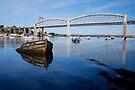 Tamar Bridges  by DonDavisUK