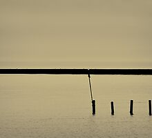 Sea Defence Triptych - 002 by Lea Valley Photographic