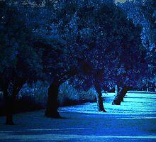 Narrow Path by BelleRubies