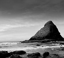 Heceta Head - Oregon by Robert Baker