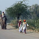 STREETS OF INDIA-1 by amulya