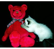 Lily and the Bear Photographic Print