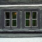 Eyes of an old house by Lenka