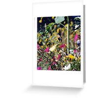 Spring is 50 Days Away!!!!!!!! Greeting Card