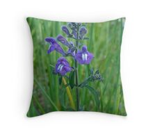 Florida Skullcap (Scutellaria floridana) Throw Pillow