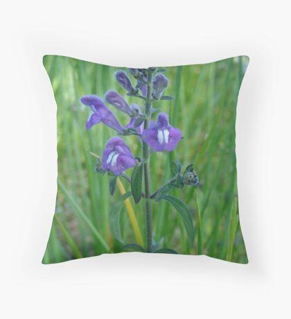 Florida Skullcap (Scutellaria floridana) Throw Pillow