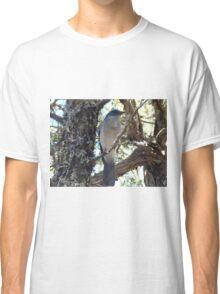 Big Bend Blue Bird Classic T-Shirt