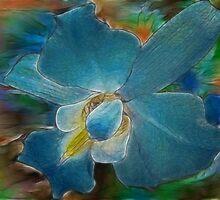 Orchid Spectrum by Kay  G Larsen