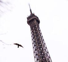 Eiffel Tower Bird Fly-By by Tobin Rogers