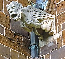 A Griffin in Aarschot by Graeme  Hyde