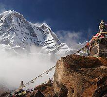 Himalaya by Erin Butler