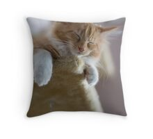 Valletta asleep again Throw Pillow