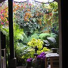 Antigua Doorway by Pat Yager