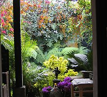 Antigua Doorway by Pat Yager