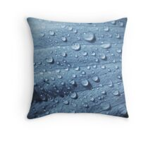 Waterdrops Throw Pillow