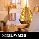 DIDSBURY M20 - 11 by exvista