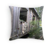 Beauty in the Broken Throw Pillow