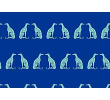 Double Greyhounds - Bold Blue/Green Photographic Print