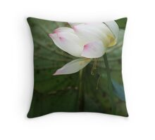 Pink-tipped white lotus on a pond Throw Pillow