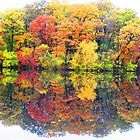 Reflections.... by sendao