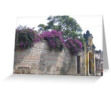 Beauty and Old Brickwork Greeting Card
