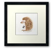 Baby Hedgehog Framed Print
