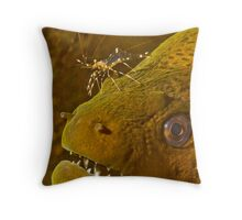 Cleaner Shrimp on Moray Throw Pillow
