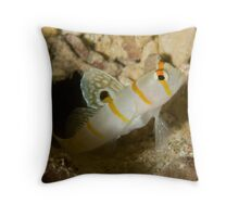 Sailfin Blemey Throw Pillow