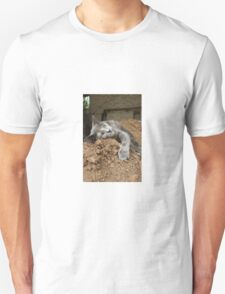cat in dirt Unisex T-Shirt