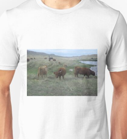 Summer Pasture  22 September 2013 Unisex T-Shirt