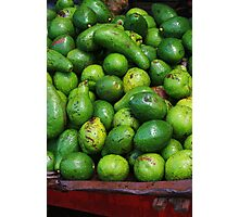 Avocados in the Market Photographic Print