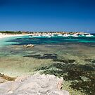Rottnest Reef by Veronica Fry