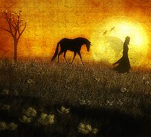 Guided by the Moonlight by Amanda  Cass