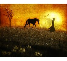 Guided by the Moonlight Photographic Print