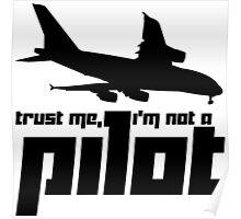 Trust me, I'm not a pilot Poster