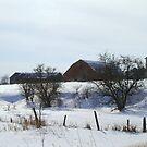 Winter on A Farm..................... by Larry Llewellyn