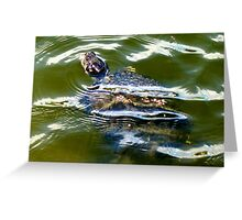 Snapping turtle closeup Greeting Card