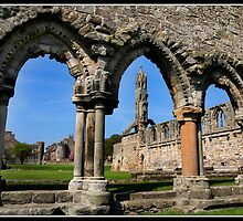 St Andrews Cathedral by Shaun Whiteman