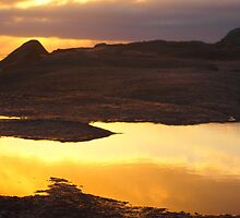 a golden morning, Bay of Fires, Tasmania by kabykaby