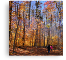 Trail Blazing Canvas Print
