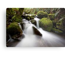 Cement Creek Metal Print