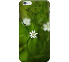 Chickweed Wildflowers iPhone Case/Skin