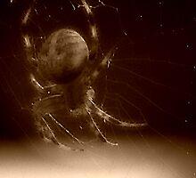 Hangin around... by solareclips~Julie  Alexander