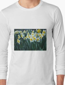 White Daffodils Long Sleeve T-Shirt